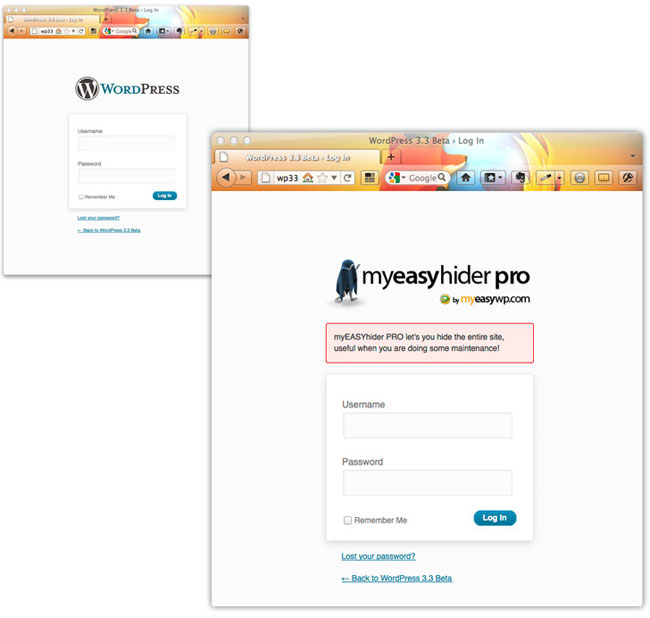Overview of WordPress Plugin myEASYhider PRO